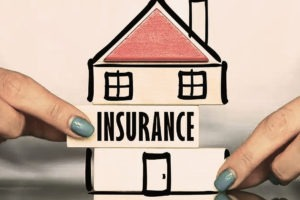 Total numbers of insurance companies